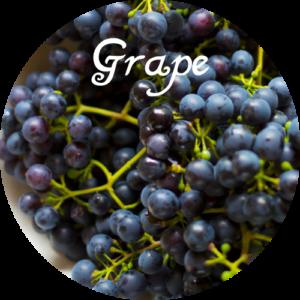 fi-zyme-500-Grape